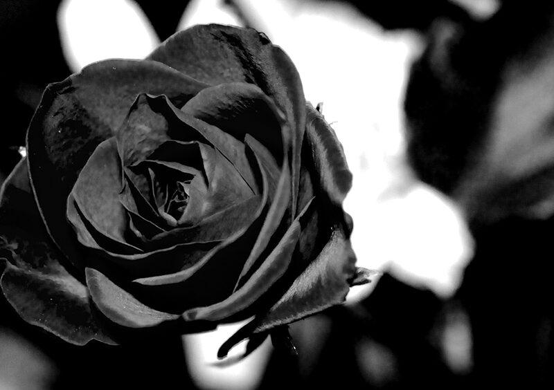 Elaborazione del lutto: realtà e falsi miti